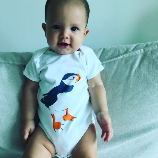 fabfabsely-puffin-babygrowjpg