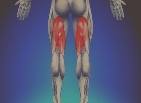 Hamstring Strain Injury: Symptoms and Treatment