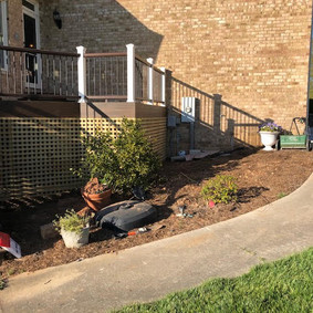 Rear Yard Landscaping -Before