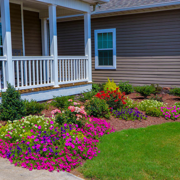 Front Yard Landscaping - After