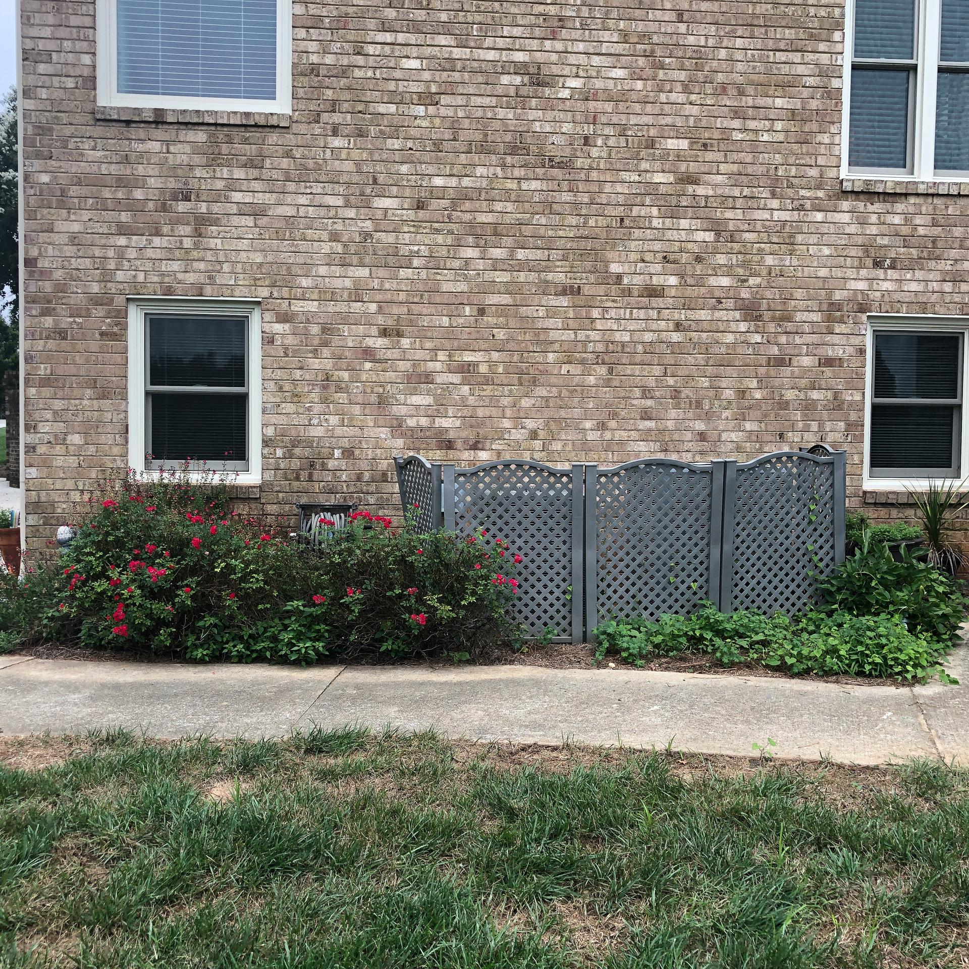 Backyard Landscaping - Before