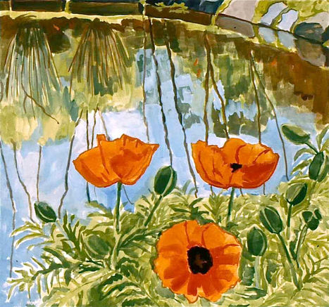 Poppies by the Pond