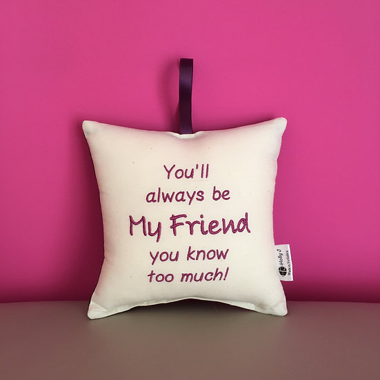 'You'll always be My Friend you know too much!' Hanging Cushion