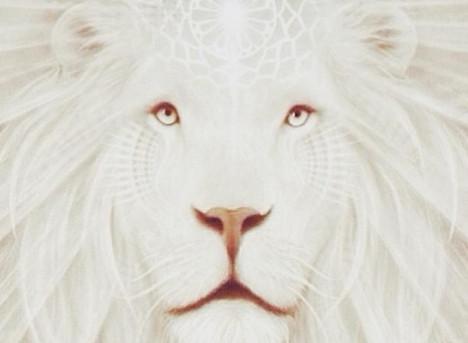 Leo New Moon: Royal Highness