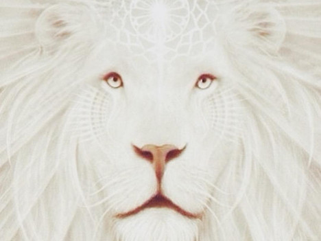 Leo New Moon: Royal Highness