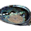 Thumbnail: Rainbow Abalone Shell