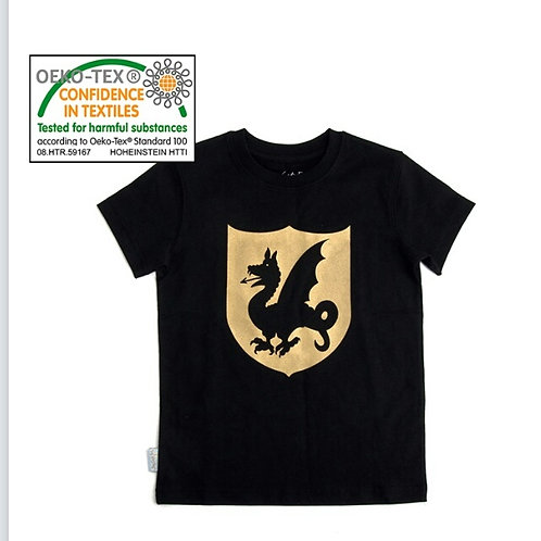T-shirt dragon Robetoy