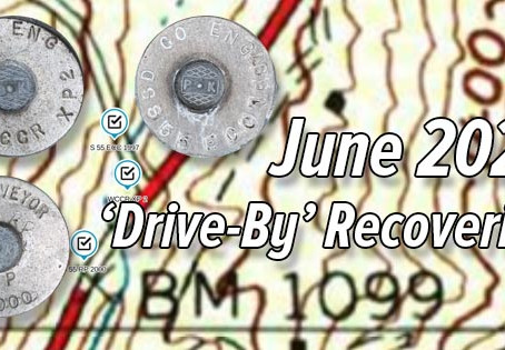 June 2021 'Drive-By' Survey Marks