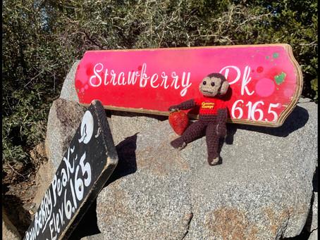 Sunny Strawberry Peak