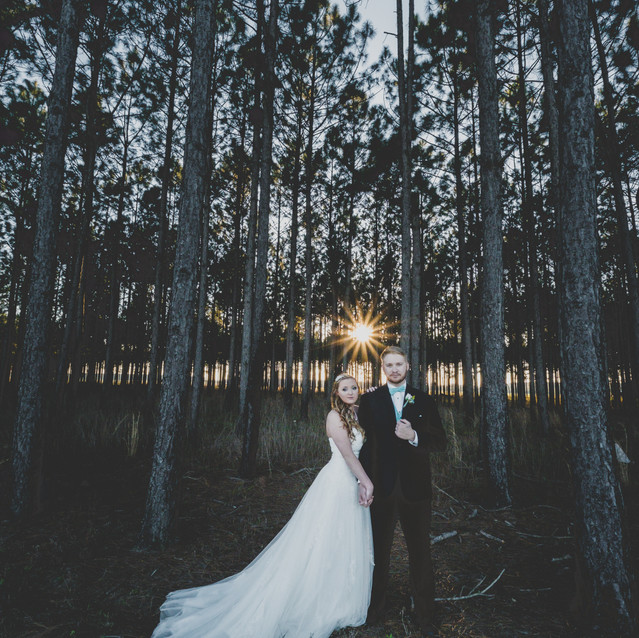 Bride and Groom in pine forrest