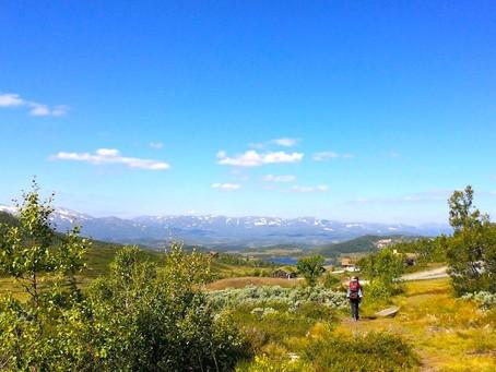 Gled deg,  Norge venter på deg i sommer!