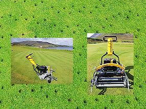 greens-report13.jpg