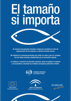 Pescado Inmaduro Andalucia