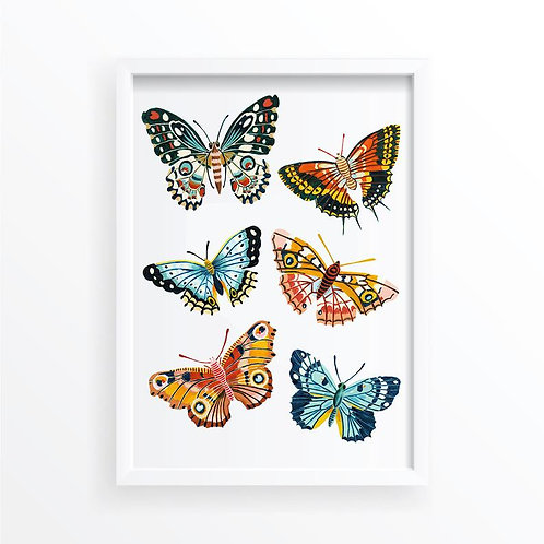 Autumn Butterfly Collection