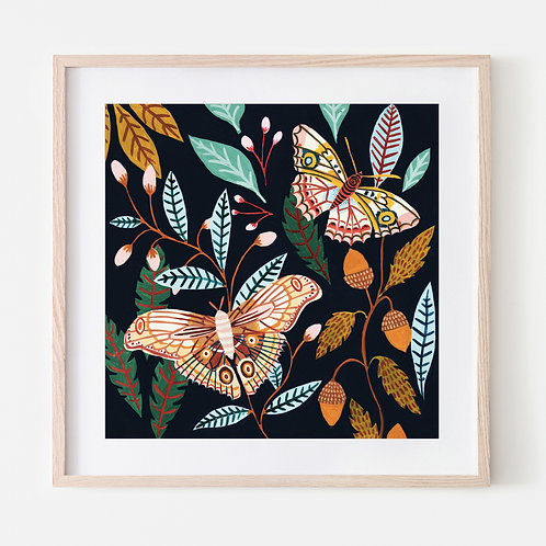 Woodland Moths
