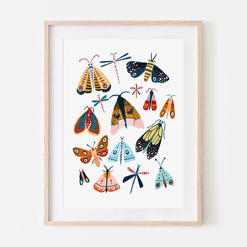 Spring Moth Collection