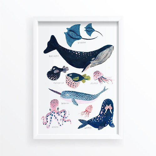 Creatures of the Ocean