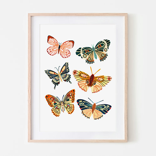 Spring Butterfly Collection