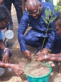 Hon Amb Dr Abu Bakaar Karim plants tree