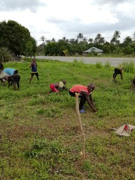 Kids help with weeding.jpg