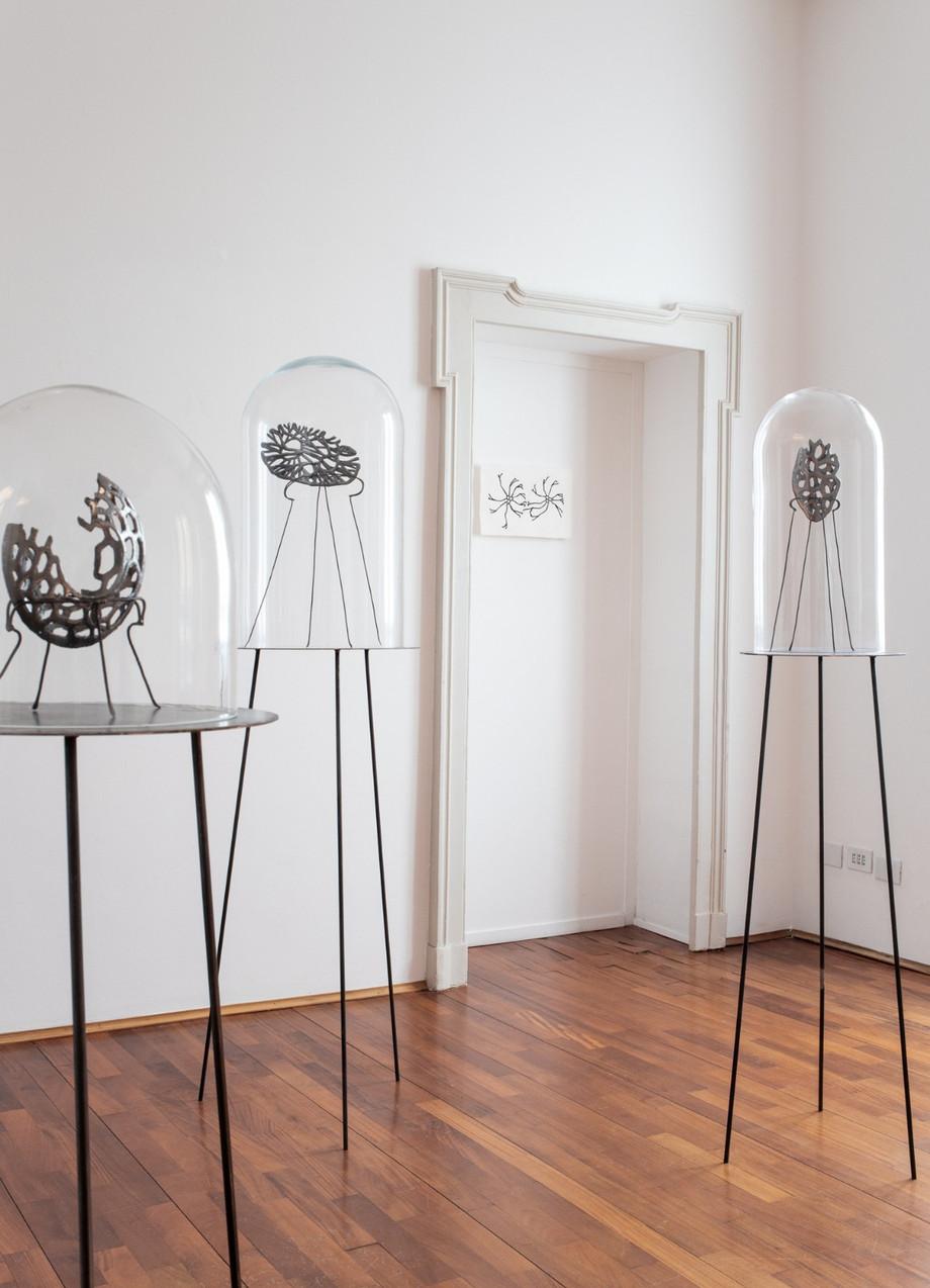 """""""Secondo Natura"""": l'artista Ferruccio Ascari racconta la sua ultima mostra"""