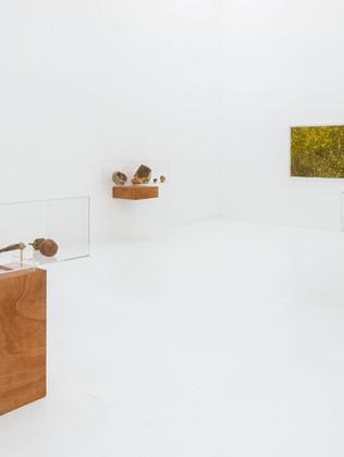 """""""In bocca"""": la personale di Luca Trevisani da Pinksummer Contemporary Art di Genova"""