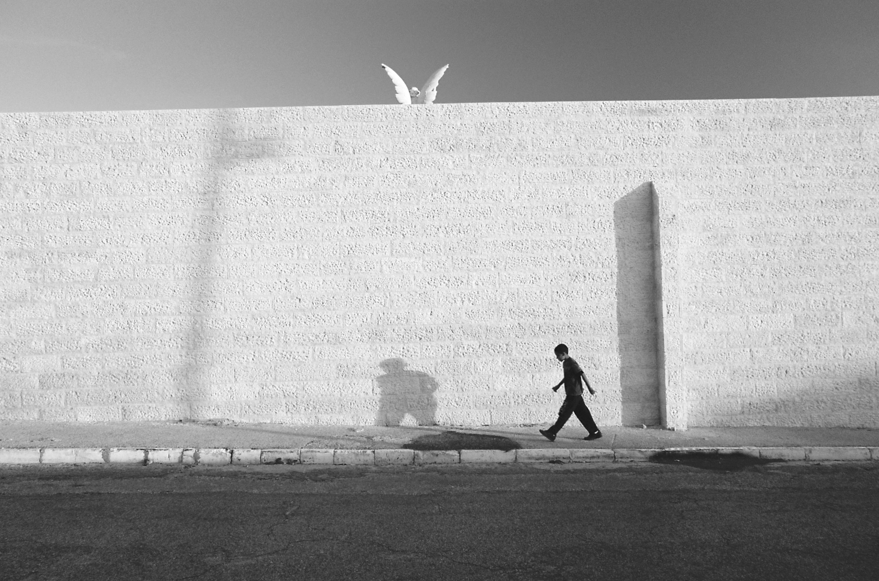 Wings, Jaffa 2012
