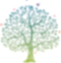 dessin-arbre.png