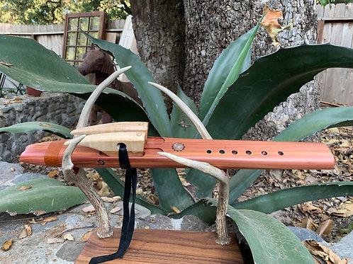 Maya Drone Eastern Red Cedar Key A