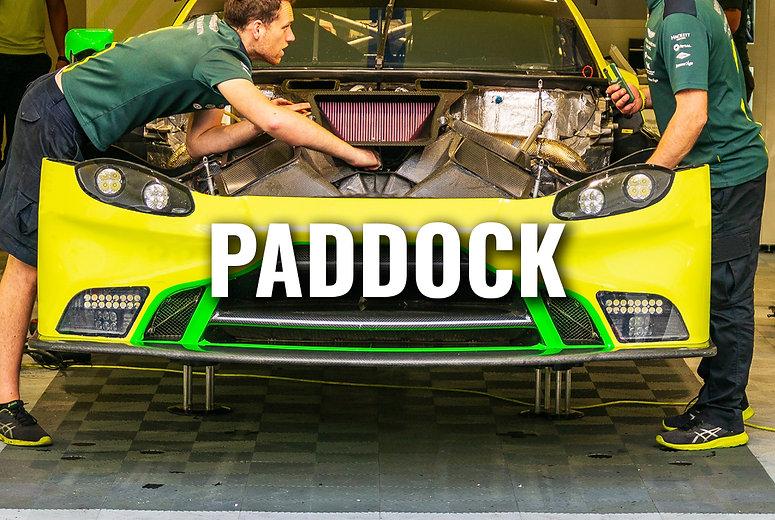 PADDOCK.jpg