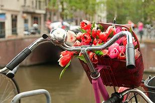 тюльпаны-красного-цвета-букета-bike-корз