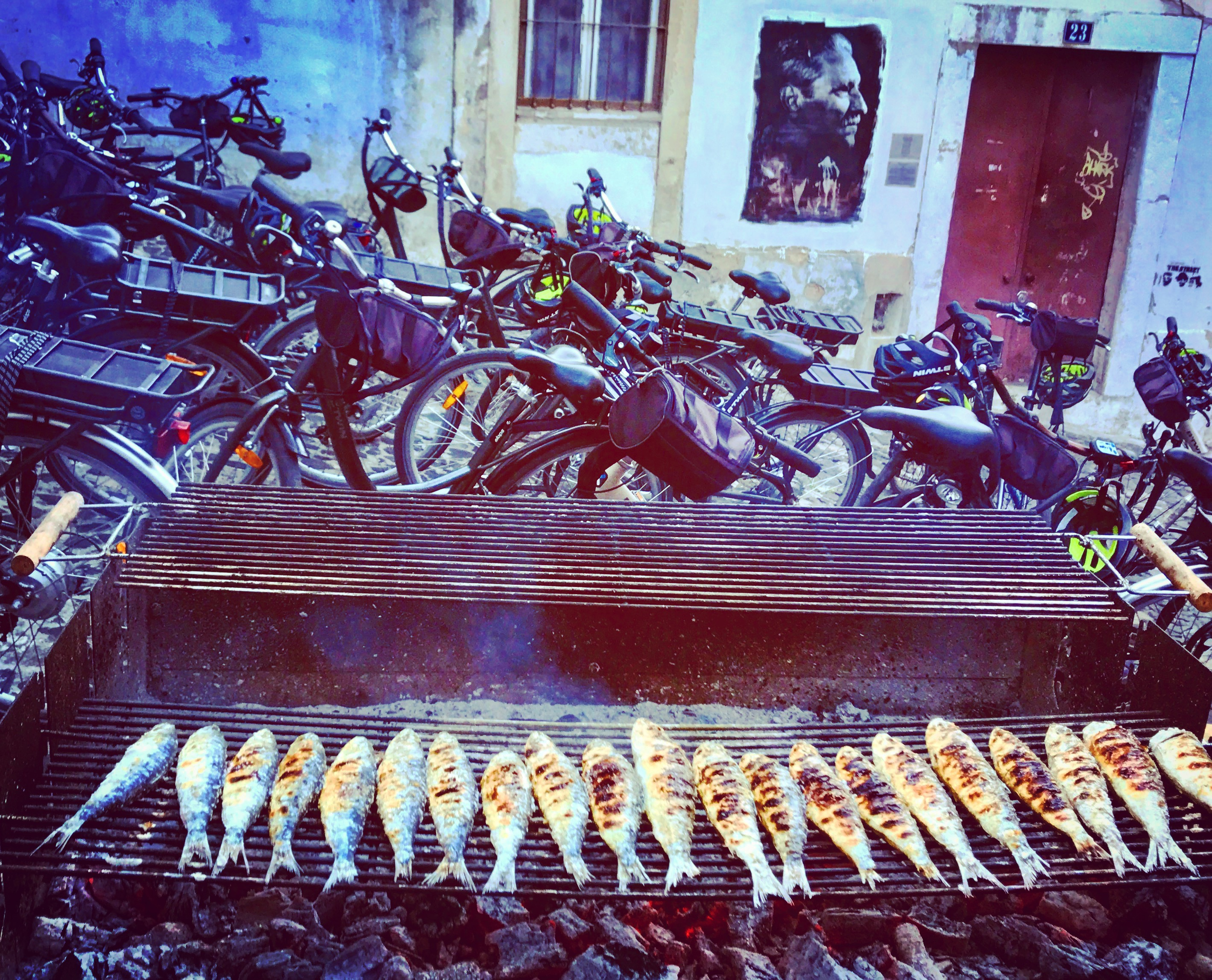The Sardines of Lisboa