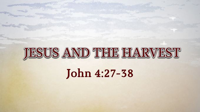Jesus and the Harvest