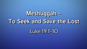 Meshuggah -  To Seek and Save the Lost - Part 2
