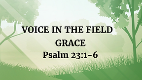 Voice in the Field - Advent #3