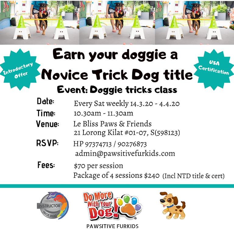 Doggie Tricks Class