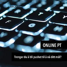 OnlinePT1.jpg