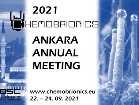 COST Chemobrionics meeting in Ankara