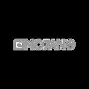 MOJANG_GRAYSCALE.png