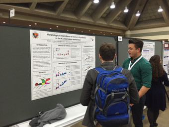 Geos/Chem undergraduate Rob Ulrich andSebastian Mergelsberg to present talk and poster at the Geolo