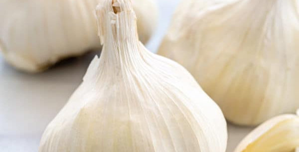 Organic Garlic 4oz