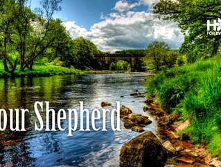 Your Shepherd