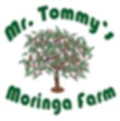 TommyMoringa.jpg
