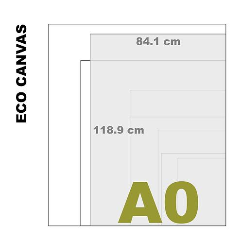 Top Grade Eco A0 Canvas Print (Matte) 370+ g/m²)