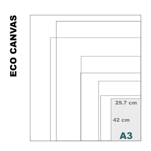 Top Grade Eco A3 Canvas Print (Matte) 370+ g/m²
