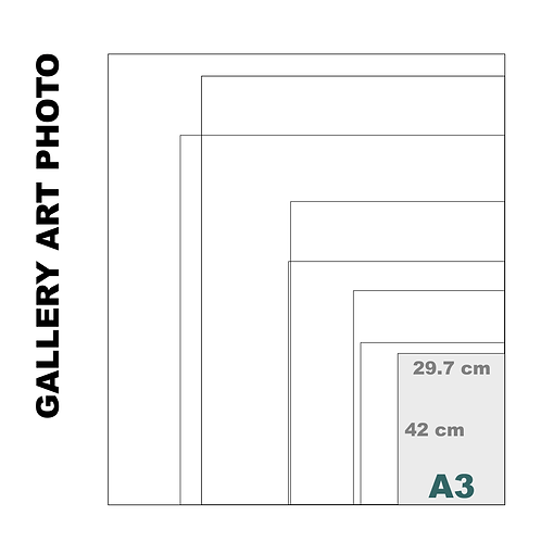 Gallery Art A3 Photo Gloss Print (310 g/m²)