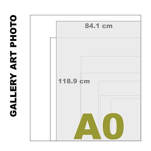 Gallery Art A0 Photo Gloss Print (310 g/m²)