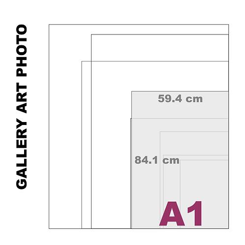 Gallery Art A1 Photo Gloss Print (310 g/m²)