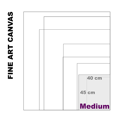 Gallery Fine Art Medium Canvas (Extra White Luster) 395 g/m²