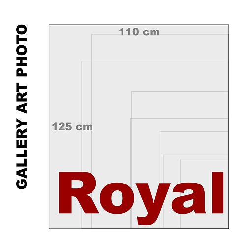 Gallery Art Royal Photo Gloss Print (310 g/m²)